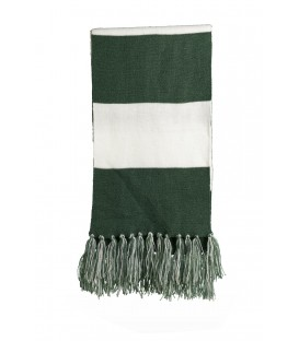 Forest Green/ White - STA02 - Sport-Tek